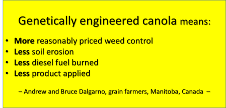 ge canola is