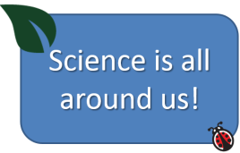 science-is-all-around-us